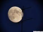 image digitale-lunare-como-jpg